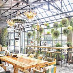 Gardenista - 50 Vạn Bảo Ba Đình Hà Nội. Repost @halleytran_  #ncchanoi #nhacuacoffeeholic by nhacuacoffeeholic