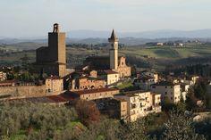 Azienda agricola Ferrale, #Laudemio producer in Vinci, #Tuscany
