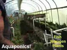 1 MILLION pounds of Food on 3 acres. 10,000 fish 500 yards compost - YouTube