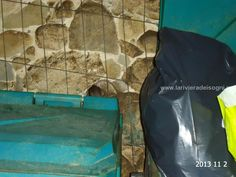 Un topo che si nasconde dietro il cassonetto