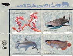 Beautiful UN stamps use endangered fish to make point - life - 31 October 2014 - New Scientist
