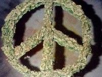 Weed Nug Peace Symbol