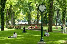 South Park Blocks by Portland State University Official Flickr Site, via Flickr