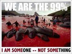 Animal rights ... Also this is what happens to the whales/dolphins that are not put into aquariums/sea world!