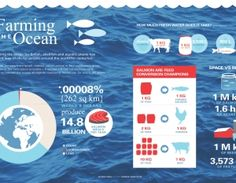 First-Ever Global Socio-Economic Report on Salmon Farming Released   3BL Media