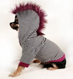 Dog Hoodie extra small Black stripes w Purple Fur Mohawk XS