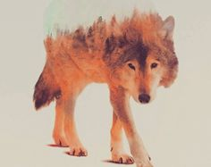 Nature in the wolf. Artist Shows Us Animals With Their Environments Inside Them, So Daoist http://www.visiontimes.com/2015/05/07/artist-shows-us-animals-with-their-environments-inside-them-so-daoist.html?photo=2