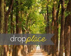 Backdrop Durable Matte Vinyl, Trees, Woods, Nature Scenic Path,Park,  Photography Background Drop, Photo Prop  (Multiple Sizes Available)