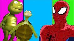 Spiderman Amazing ABC Songs for Children | Tortoise Finger Family Rhymes...