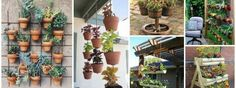 12 Creative DIY Gardens That Will Amaze You