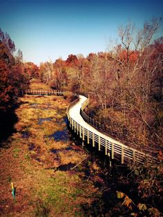 Silver Comet Trail in Powder Springs, GA Great Places, Places To See, Beautiful Places, Bike Trails, Hiking Trails, Visit Atlanta, Powder Springs, Bike Path, Bike Rides