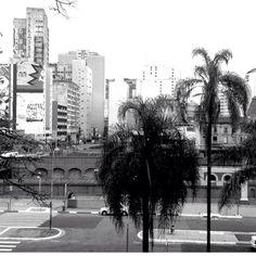 Foto tirada na região da Pinacoteca, no centro de São Paulo.