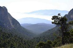 Madrid, 19 dic (EFE).- Uno de cada cuatro espacios españoles que se declararon Lugar de Interés Comunitario para incorporarse a la red europea Natura 2000 carece del plan de gestión que exige la UE para definir las medidas que se deben adoptar para asegurar el buen estado de conservación de esos espacios