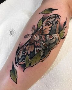 Old school tattoo tattoo collection. Every hour I publish the interesting . - Old school tattoo tattoo collection. Every hour I publish the most interesting … – Old school t - Moth Tattoo Design, Tattoo Designs, Tattoo Design Drawings, Sketch Tattoo, Traditional Tattoo Animals, Traditional Moth Tattoo, Trendy Tattoos, Cool Tattoos, Unique Tattoos