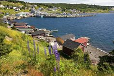 The town of Dildo in Newfoundland is actually quite picturesque
