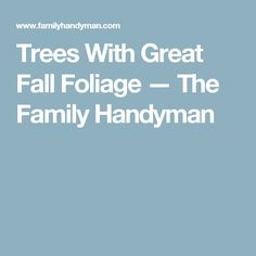 Trees With Great Fall Foliage — The Family Handyman