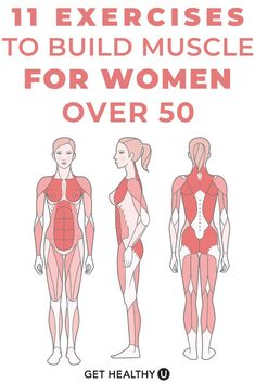Fitness Workout For Women, Fitness Diet, Health Fitness, Strength Training Women, Strength Training Workouts, Health And Fitness Articles, Senior Fitness, Workout Challenge, Easy Workouts