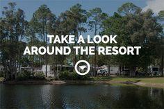Woodsmoke Camping Resort | South Florida's Friendliest RV Resort