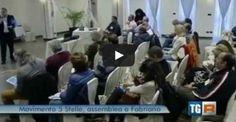 Meeting Attivisti Marche 5 Stelle