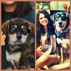 SELENA GOMEZ and baylor | Selena Gomez and Baylor - Selena Gomez Photo (31872478) - Fanpop ...