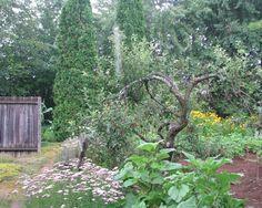 Jardin du Grand Portage