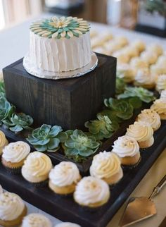 Wedding cupcake stand with succulents