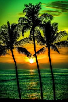 Excited to share this item from my shop US Seller Tropical Sunset Green Palm Trees Ocean Beach Diamond Painting Kit Full Drill Round Drills Free SH Beautiful Sunset, Beautiful World, Beautiful Places, Amazing Sunsets, Simply Beautiful, Pretty Pictures, Cool Photos, Beach Photos, Sunset Photography