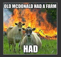 Evil Cows Meme – Old MacDonald