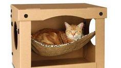 L'amaca per gatti dentro la scatola di cartone
