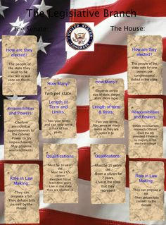Duties of the American government legislative branch. Click on to pin to preview.