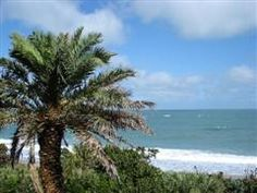 Vero Beach Florida has some of the best beaches in the state according to Florida Backroads Travel.