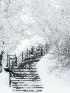 Stairway to the. Clouds!! Carolbe 755