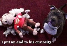 The demise of Curious George!