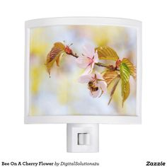 Bee On A Cherry Flower Night Light