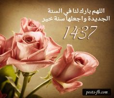 ᐅ Top 139 Roses images, greetings and pictures for WhatsApp