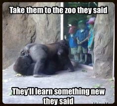 Lmao! This is actually a pic a friend took of her kids on a field trip! LOL