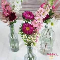 Classy Thinkin Pink Do-It-Yourself Wildflower Pack from BloomsByTheBox.com