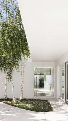 holistic residential architecture and interior design : award winning architects melbourne Residential Architecture, Landscape Architecture, Interior Architecture, Landscape Design, Garden Design, House Design, Melbourne Architecture, Path Design, Pavilion Architecture