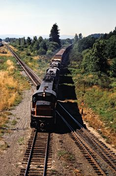 MILW, Centralia, Washington, 1979 Southbound Milwaukee Road freight train at Elakeslee Junction with Burlington Northern Railroad crossing in Centralia, Washington, on July 16, 1979. Photograph by John F. Bjorklund, © 2016, Center for Railroad Photography and Art. Bjorklund-68-15-09