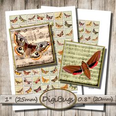 Butterflies Moths on Music Paper, Digital Collage Sheet, 1 inch, 0.8 inch Squares, 25 mm, 20 mm, Printable Moth Images, Instant Download, a5