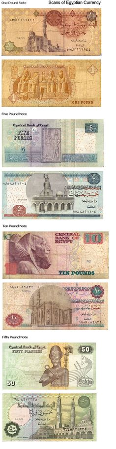 Egyptian currency #wishwewerethere
