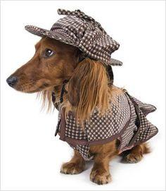 Sherlock Hound Costume
