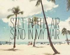 Beach Photography - Hawaii oahu waikiki - quote photograph - palm trees beach ocean photograph - salt in the air sand in my hair