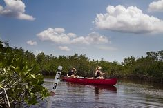 PVC markers guide Jim and Kristina Palmer of Tampa as they paddle amongst the mangroves in the Everglades.