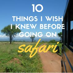 Safari completely shattered + blew away my every expectation. Here's the top things I wish someone would have told me before I embarked on an African safari.