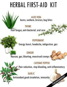 Outstanding Home Remedies tips are offered on our web pages. Read more about natural home remedies. Healing Herbs, Medicinal Plants, Natural Healing, Magic Herbs, Herbal Magic, Natural Health Remedies, Herbal Remedies, Natural Medicine, Herbal Medicine