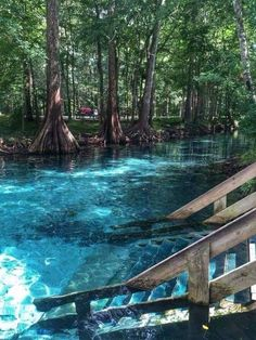 Ginnie Springs in High Springs FL. I love staircases that lead into the river! Ginnie Springs in High Springs, FL. I love staircases that lead into the river! Ginnie Springs i Vacation Places, Dream Vacations, Vacation Spots, Places To Travel, Travel Destinations, Vacation Ideas, The Places Youll Go, Places To See, Florida Travel