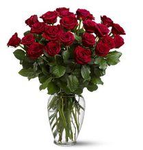 Two Dozen Red Roses - Twice as impressive as a dozen red roses.  http://www.allensflowermarketonline.com/two-dozen-red-roses/