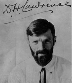 D.H. Lawrence, author of Lady Chatterley's Lover.  If you're not quite ready Fifty Shades of Grey, there are other tamer versions of lust, infidelity, and romps between the sheets that you may want to consider such as Lady Chatterley's Lover by D.H. Lawrence.  Read a review at http://readinginthegarden.blogspot.com/2013/08/lady-chatterleys-lover-by-dh-lawrence.html