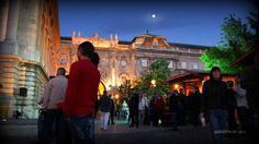 Libamájfesztivál a Várban - Goose liver Festival at Buda Castle in Budapest